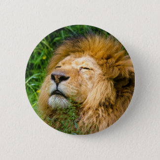 Dope Lion in the grass 6 Cm Round Badge