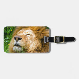 Dope Lion in the grass Bag Tag