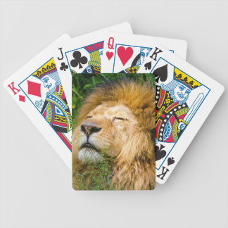 Dope Lion in the grass Bicycle Playing Cards
