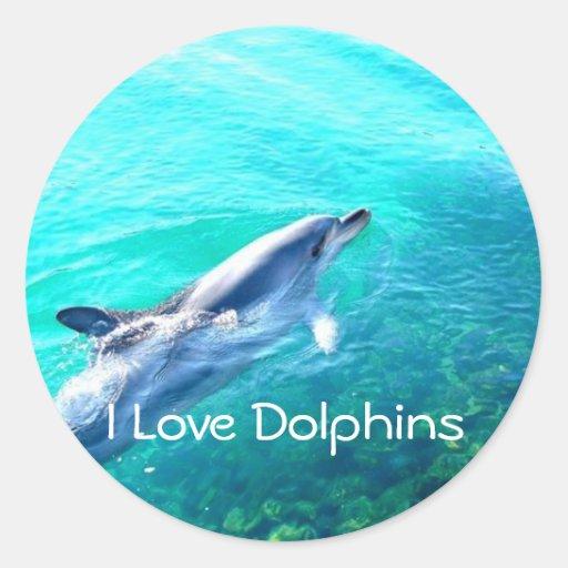 Dophin School Binder Teacher Reward Sticker