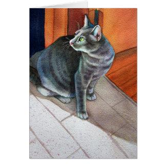 Dora, the Grey Tabby Cat, Card