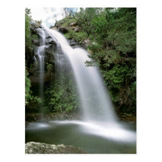 Doreen falls, South Africa Postcard