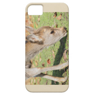 Doreen Phone Case