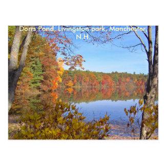 Dorrs Pond in the Fall-3, Dorrs Pond, Livingsto... Postcard