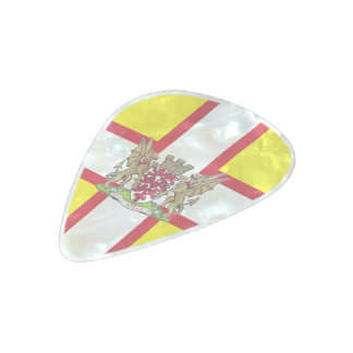 Dorset flag pearl celluloid guitar pick