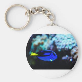 Dory , Blue Tang Fish Key Ring
