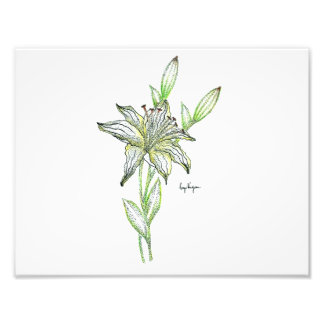 Dotwork Lily Print - Satin Finish Paper Photographic Print