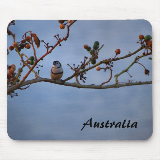 Double-barred finch on branch mouse pad