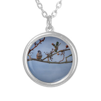 Double-barred finch on branch silver plated necklace
