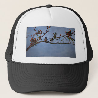 Double-barred finch on branch trucker hat