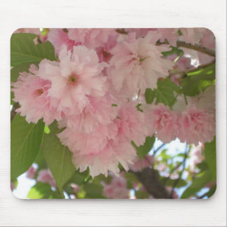 Double Blossoming Cherry Trees II Mousepad