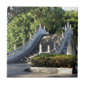 Double bridges, Guilin, China Tile