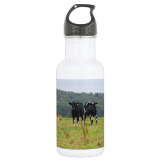 Double Cattle Troube 532 Ml Water Bottle