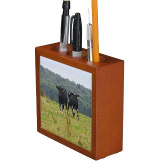 Double Cattle Troube Desk Organiser