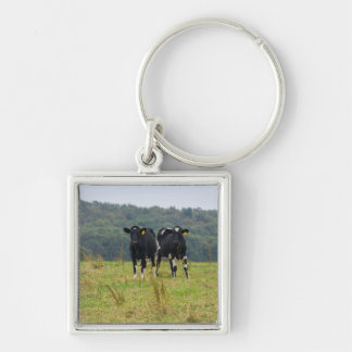 Double Cattle Troube Key Ring