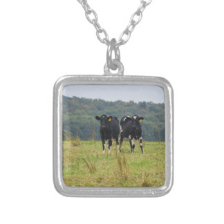 Double Cattle Troube Silver Plated Necklace