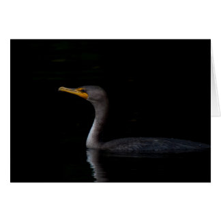 Double Crested Cormorant 01 Card