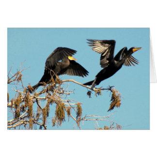 Double Crested Cormorants Take Flight (2537) Card