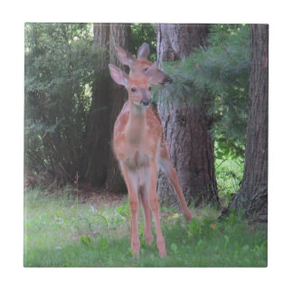 Double Deer Ceramic Tile