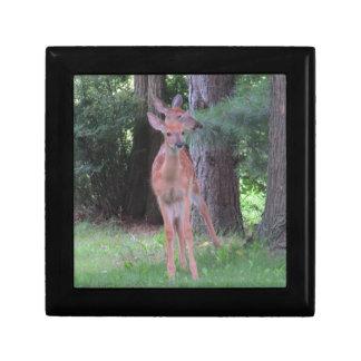 Double Deer Gift Box