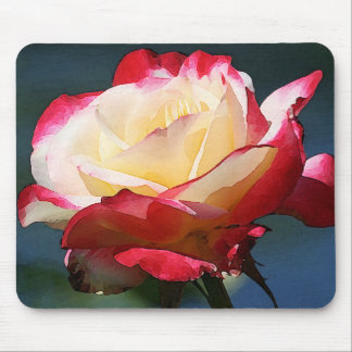 'Double Delight' hybrid tea rose Mouse Pad