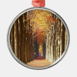 Double European Beech Alley Domaine de Mariemont Silver-Colored Round Decoration