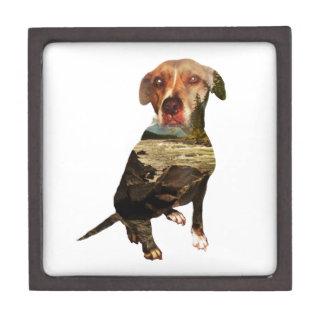 double exposure dog premium gift box