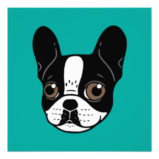Double Hooded Pied French Bulldog Puppy Photo Print
