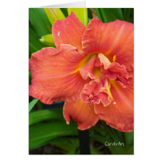 """Double Orange Day Lily"" Note Card"