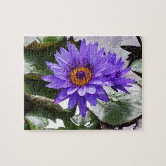 Double Purple Pond Lily Puzzle