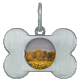 Double Rainbow Pond Pet Tag