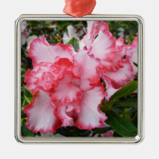 Double Red and White Azaleas Spring Floral Silver-Colored Square Decoration