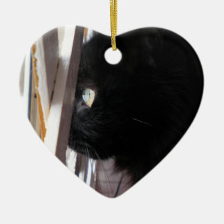Double Sided Ornament featuring Smoky