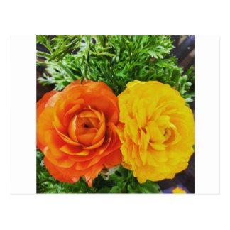 Double Trouble Flower Postcard