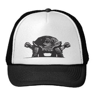 Double Turtle Cap