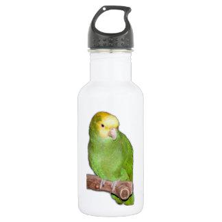 Double Yellow Headed Amazon Parrot 532 Ml Water Bottle