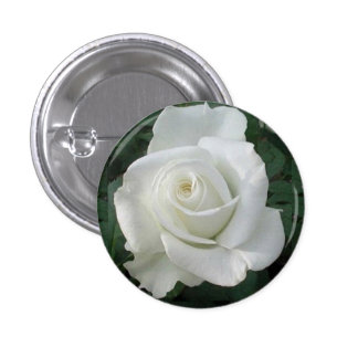 Doubled Petals White Rose Round Button