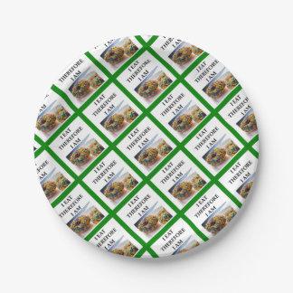 doughnut paper plate