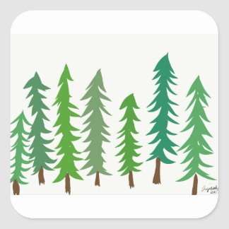 Douglas Fir Trees Square Sticker