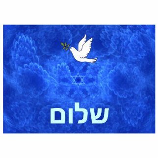 Dove -  Shalom Photo Sculpture Magnet
