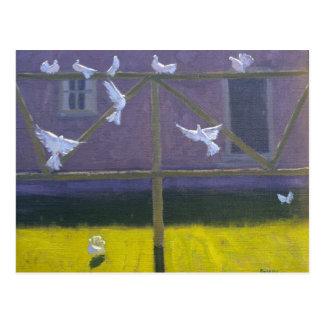 Doves 1999 postcard