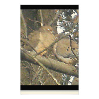 Doves of Life* Sleepy Wildlife of Love ~ Customized Stationery