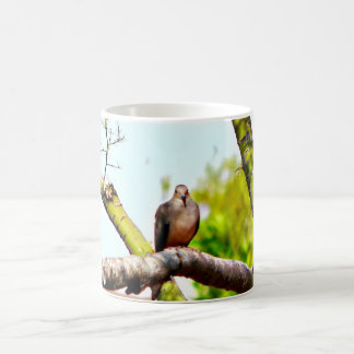 Doves On A Limb Classic Coffee Cup