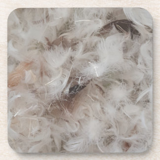 Down Comforter Feathers Photography Funny Coaster