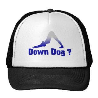 DOWN DOG ANYONE ? CAP