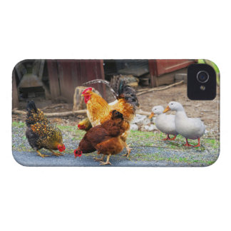 Down on the Farm Case-Mate iPhone 4 Case