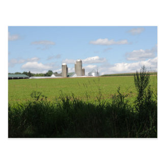 Down on the Farm Postcard