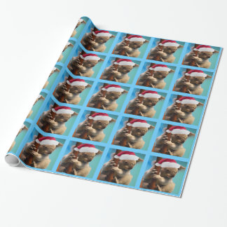 Down Under Christmas Hat Koala Wrapping Paper