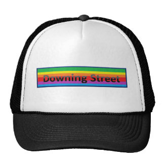 Downing Street Style 3 Mesh Hats