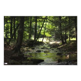 Downstream Photo Print
